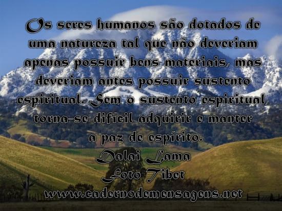 Os seres humanos...