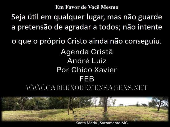 Em Favor de Você Mesmo   André Luiz 11