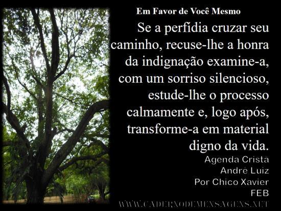Em Favor de Você Mesmo   André Luiz13