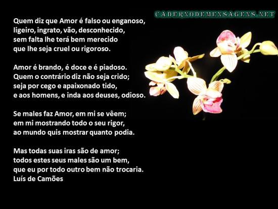 Amor é Brando