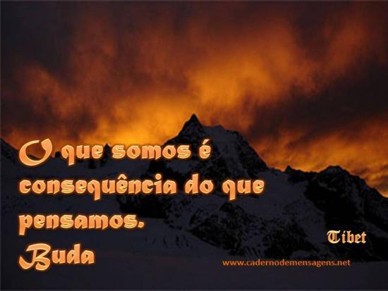 Somos Buda