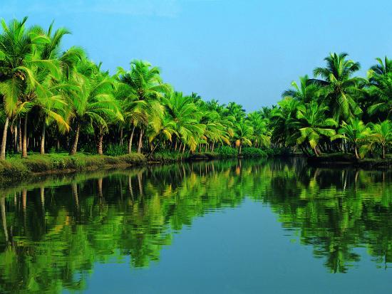 india-aquatica.jpg